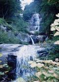 こんな美しい滝が連続して続きます