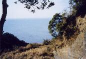 林間フェースから望む東京湾