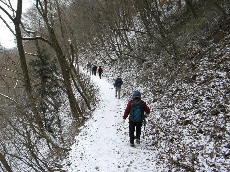 鹿の子模様の雪の道